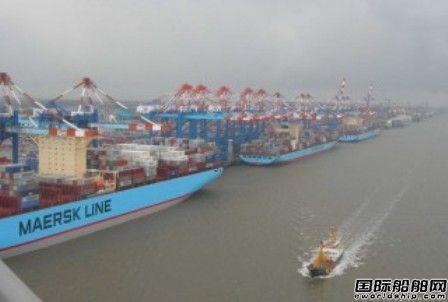 德鲁里:集运公司可靠性创新高