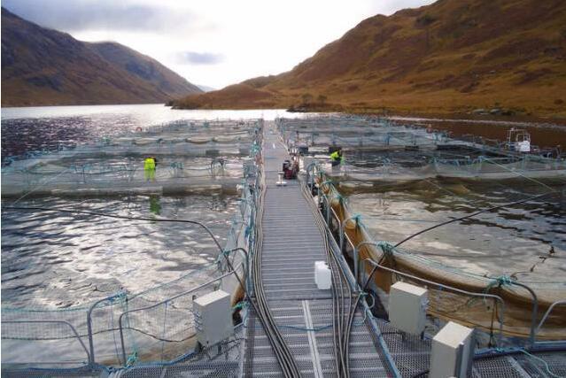 大开眼界!挪威三文鱼养殖工船
