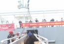中远船务牲畜船为国内首次进口墨雷灰牛