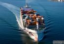 德路里:集装箱船市场已触底反弹