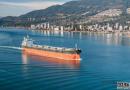 船东:散货船市场终于苦尽甘来