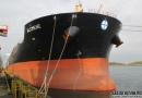 Diana航运发股募资7000万美元收购船舶