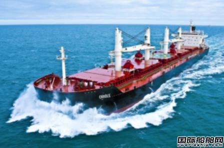 Eagle Bulk寻求收购更多散货船