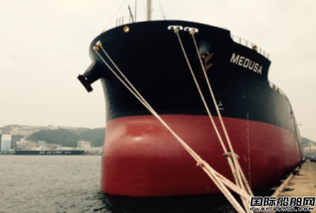 Diana Shipping获3艘散货船高价租约
