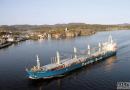 船东:散货船市场最坏时期已结束