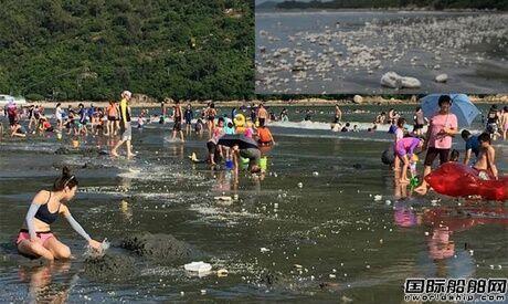 两船相撞致9000吨棕榈油泄漏污染香港海滩