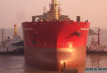 大岛造船获6艘灵便型散货船订单