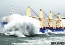 太平洋航运计划继续收购二手散货船
