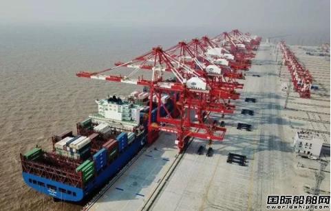 空无一人?上海洋山港自动码头探秘