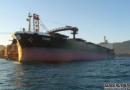 Diana获一艘巴拿马型散货船租约