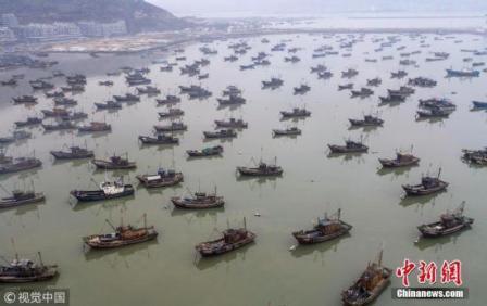 全国压减海洋捕捞渔船将不少于4000艘