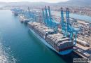 """今年还有90万TEU交付,集装箱船市场""""亚历山大"""""""